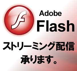 flash streaming